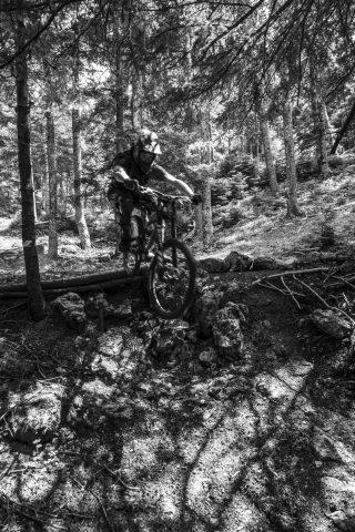 txp-downhill-LDL-2017-03