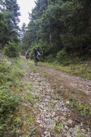 txp-downhill-LDL-2017-05
