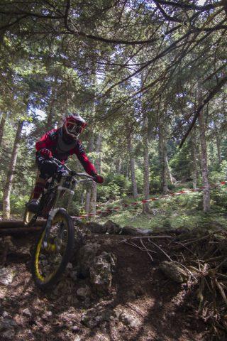 txp-downhill-LDL-2017-06