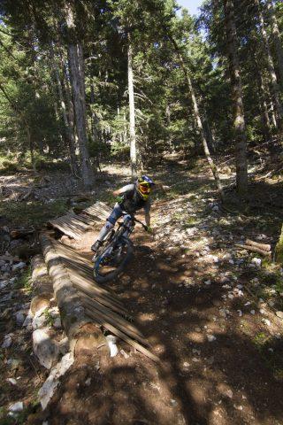 txp-downhill-LDL-2017-15
