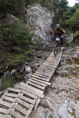 txp-downhill-LDL-2017-38
